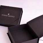 Caixa corporativa – Rosana Negrão
