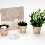 Identidade Visual para casamento – Kit Ecológico